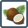 kokos-100x100